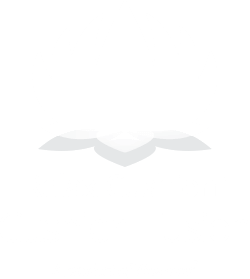cushionfusion-logo